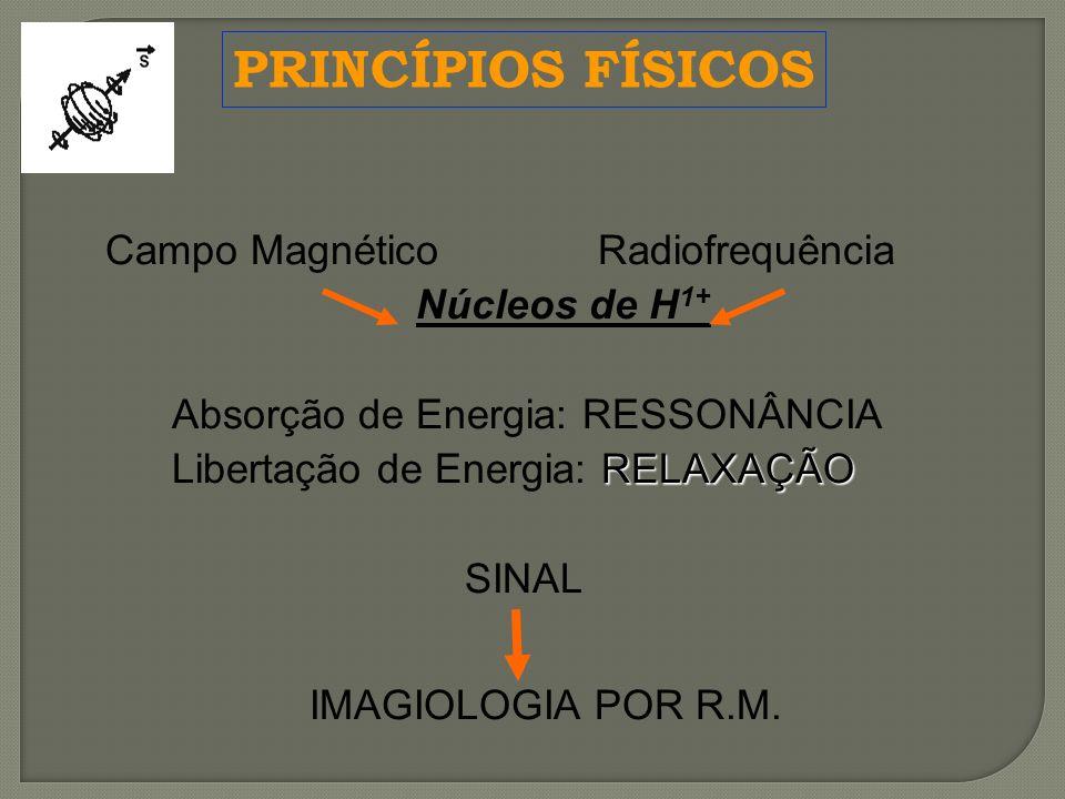 PRINCÍPIOS FÍSICOS Campo Magnético Radiofrequência Núcleos de H1+