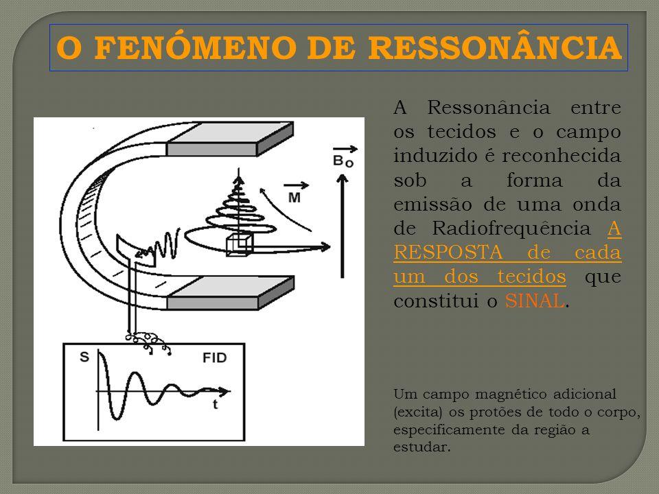O FENÓMENO DE RESSONÂNCIA