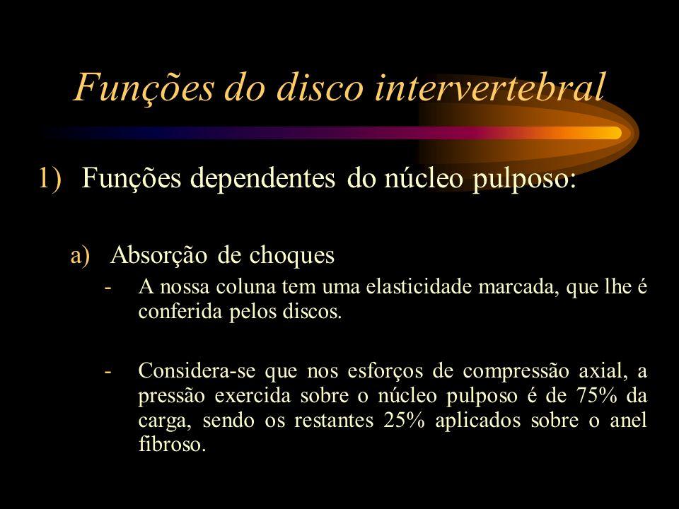 Funções do disco intervertebral