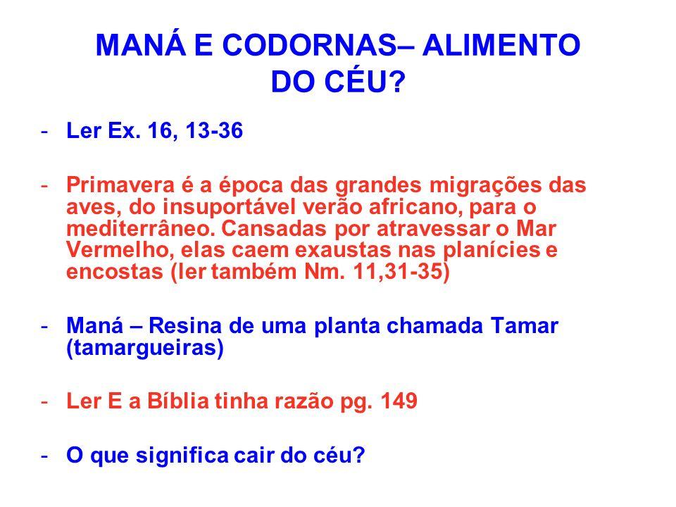 MANÁ E CODORNAS– ALIMENTO DO CÉU