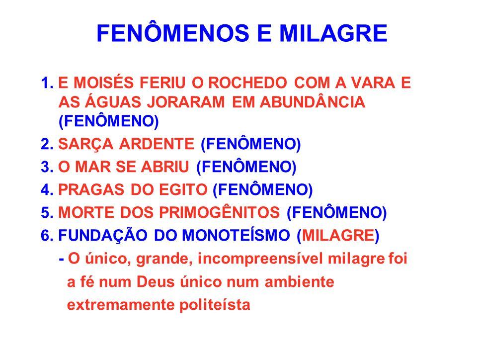 FENÔMENOS E MILAGRE 1. E MOISÉS FERIU O ROCHEDO COM A VARA E AS ÁGUAS JORARAM EM ABUNDÂNCIA (FENÔMENO)