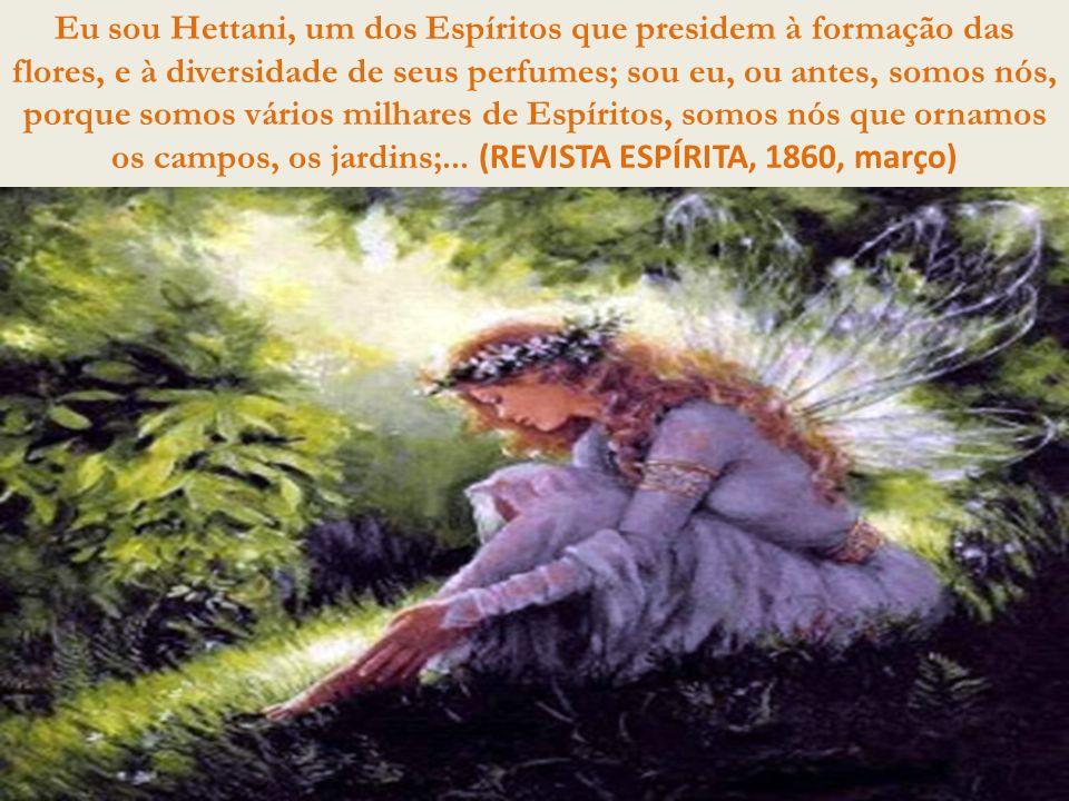 Eu sou Hettani, um dos Espíritos que presidem à formação das flores, e à diversidade de seus perfumes; sou eu, ou antes, somos nós, porque somos vários milhares de Espíritos, somos nós que ornamos os campos, os jardins;...
