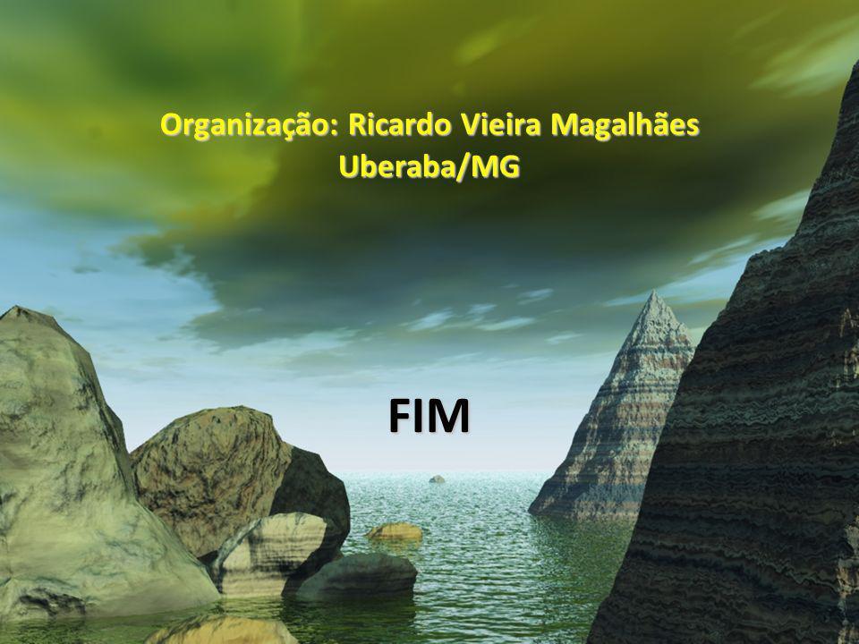 Organização: Ricardo Vieira Magalhães Uberaba/MG FIM
