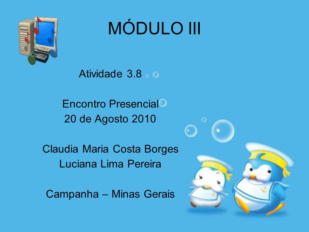MÓDULO III Atividade 3.8 Encontro Presencial 20 de Agosto 2010