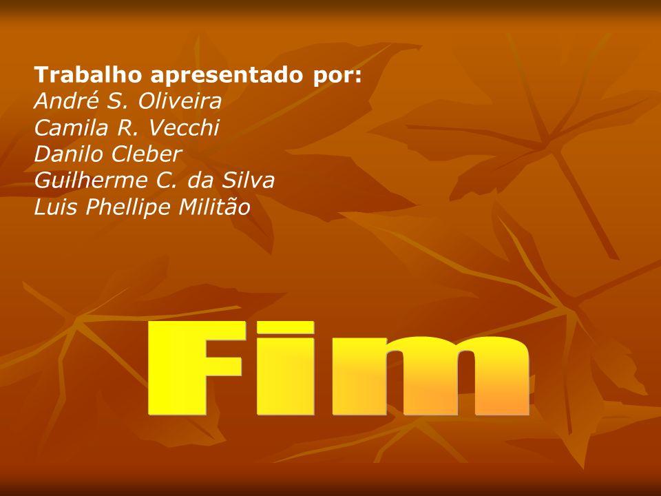 Fim Trabalho apresentado por: André S. Oliveira Camila R. Vecchi