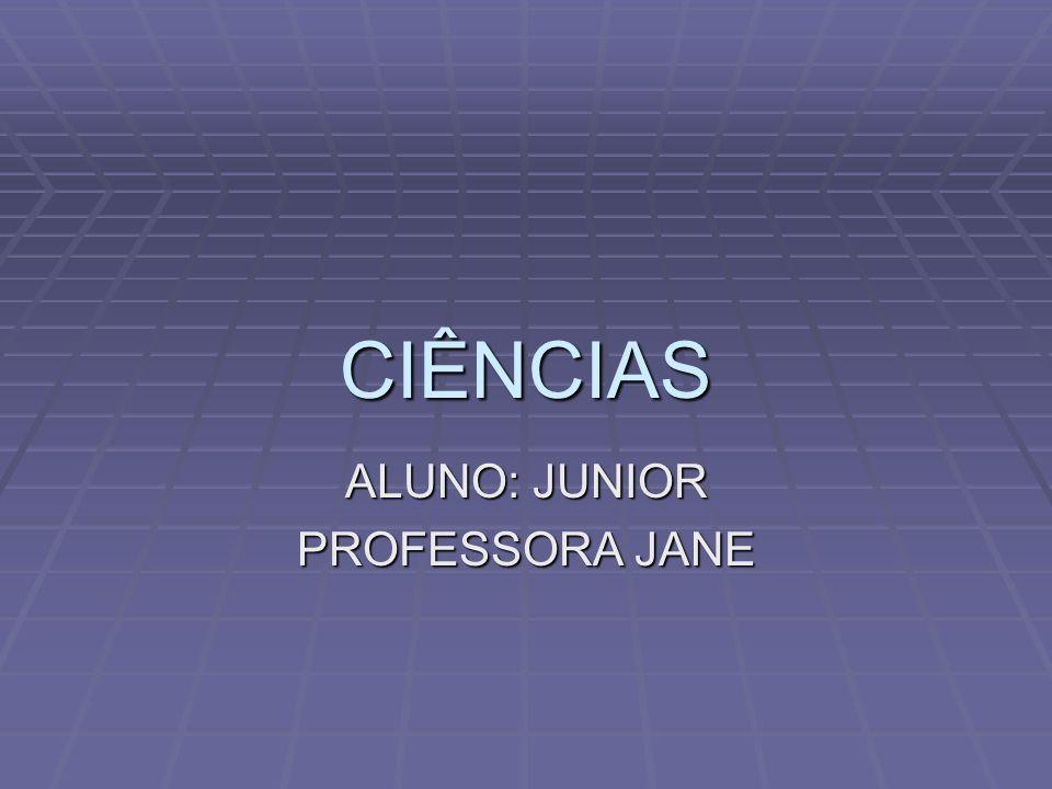 ALUNO: JUNIOR PROFESSORA JANE