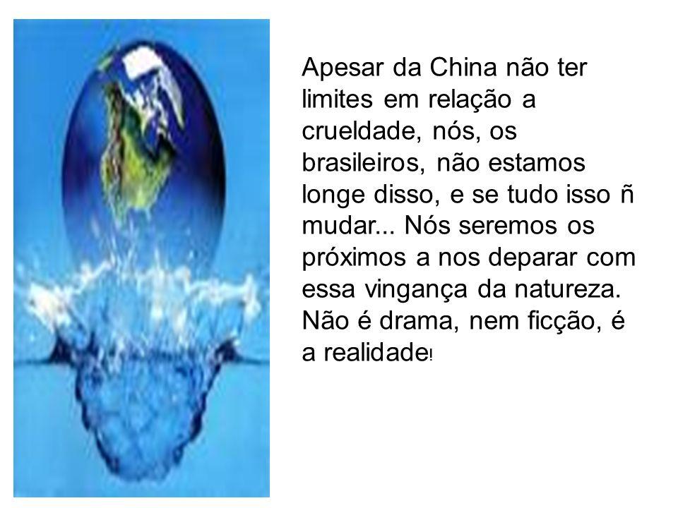 Apesar da China não ter limites em relação a crueldade, nós, os brasileiros, não estamos longe disso, e se tudo isso ñ mudar...
