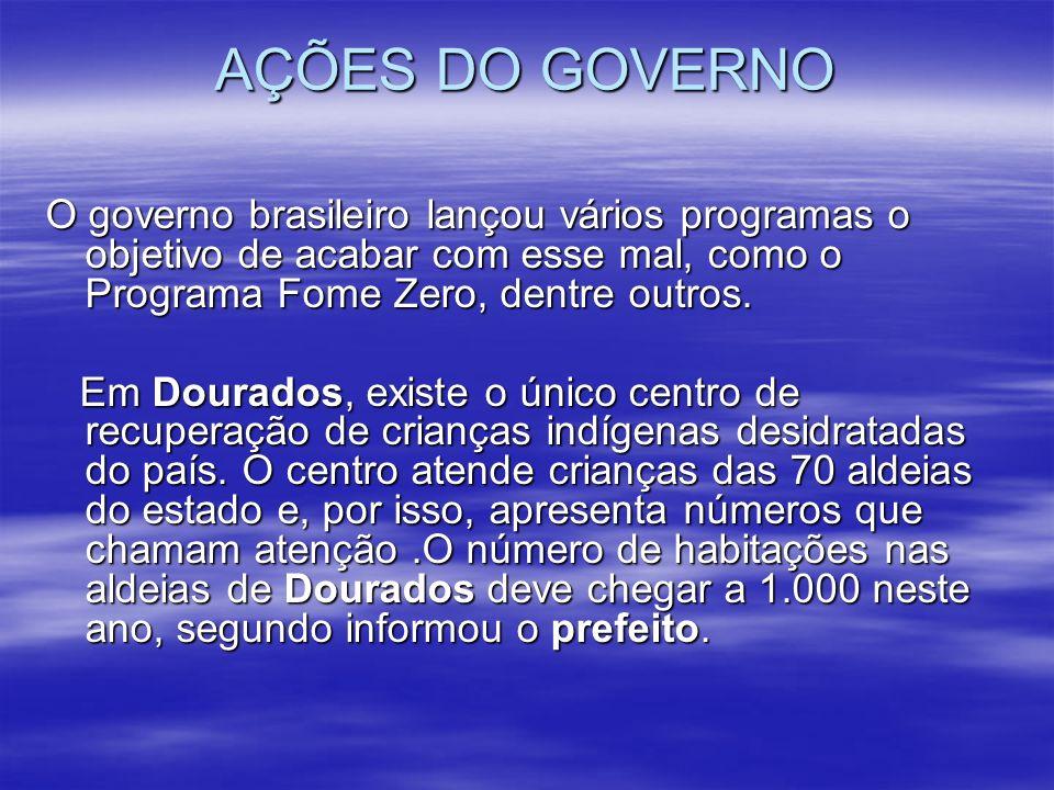 AÇÕES DO GOVERNO O governo brasileiro lançou vários programas o objetivo de acabar com esse mal, como o Programa Fome Zero, dentre outros.