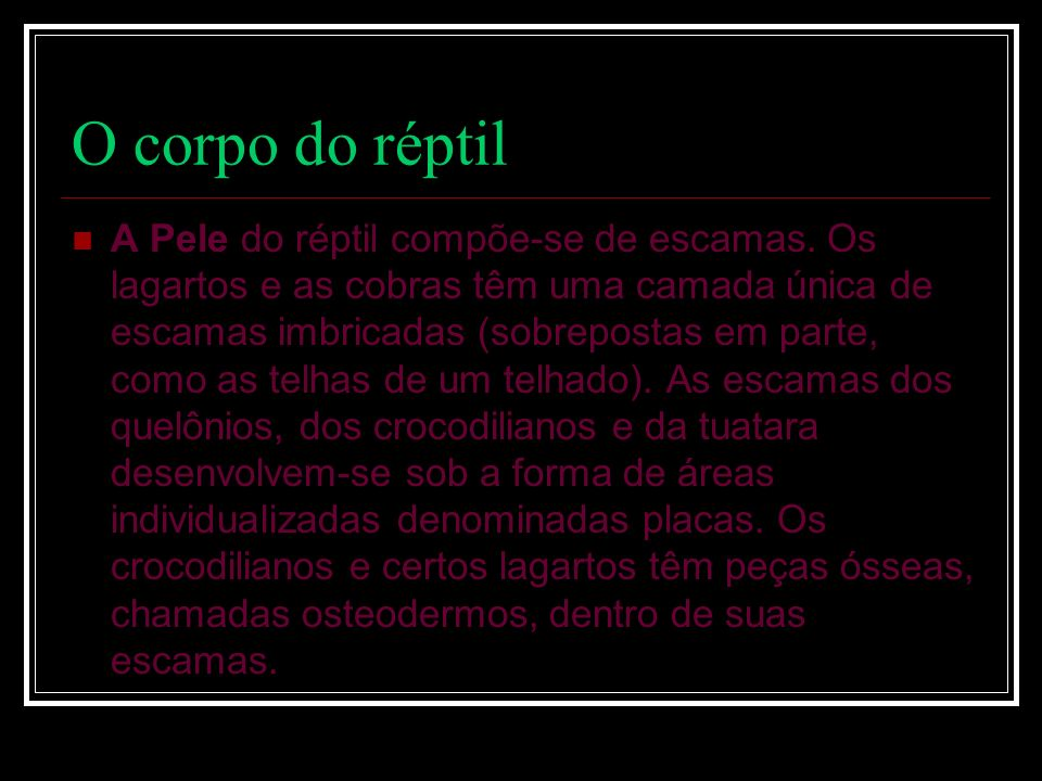 O corpo do réptil