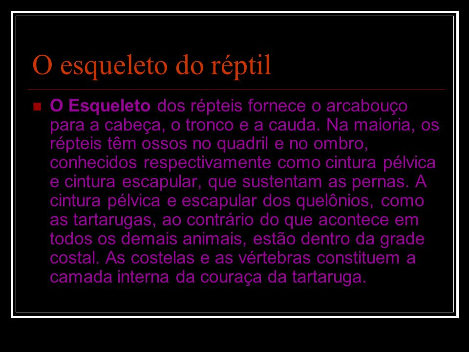 O esqueleto do réptil