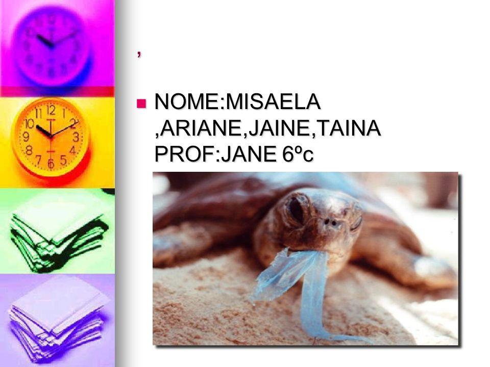 , NOME:MISAELA ,ARIANE,JAINE,TAINA PROF:JANE 6ºc.