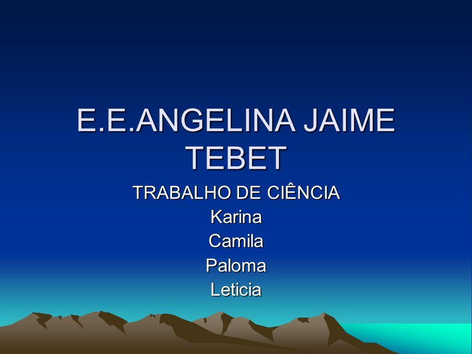 E.E.ANGELINA JAIME TEBET