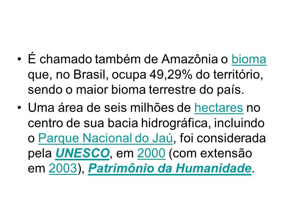 É chamado também de Amazônia o bioma que, no Brasil, ocupa 49,29% do território, sendo o maior bioma terrestre do país.