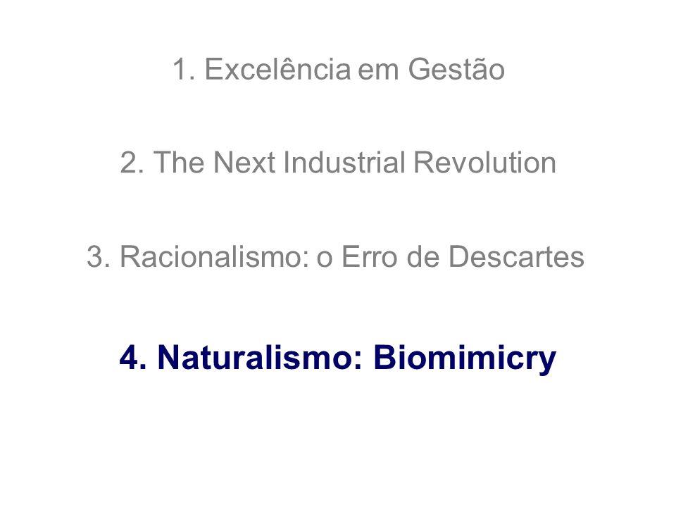 4. Naturalismo: Biomimicry