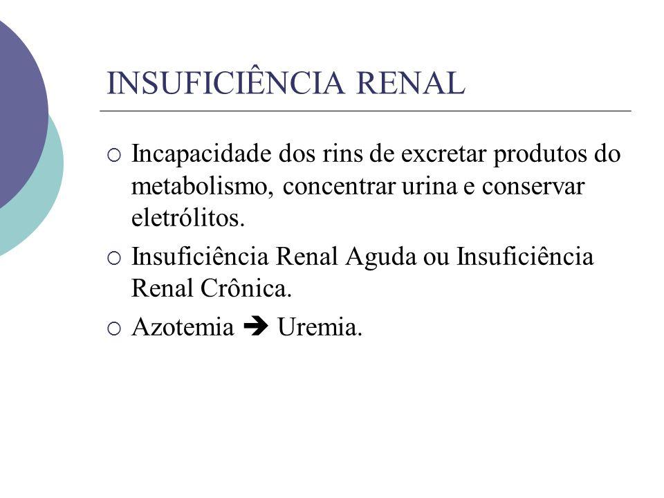 INSUFICIÊNCIA RENAL Incapacidade dos rins de excretar produtos do metabolismo, concentrar urina e conservar eletrólitos.