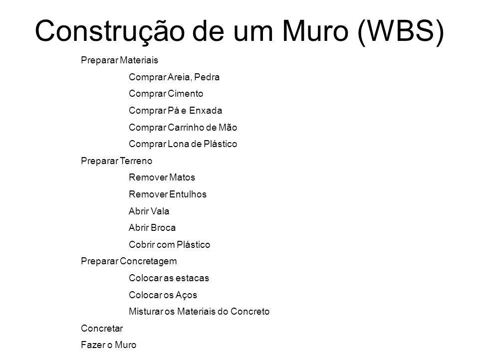 Construção de um Muro (WBS)