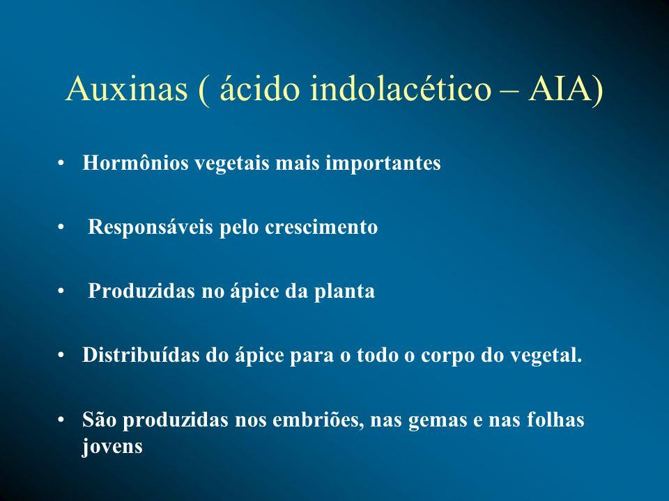 Auxinas ( ácido indolacético – AIA)