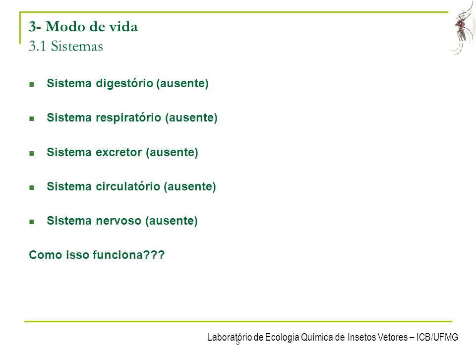 3- Modo de vida 3.1 Sistemas Sistema digestório (ausente)