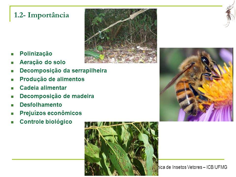 1.2- Importância Polinização Aeração do solo