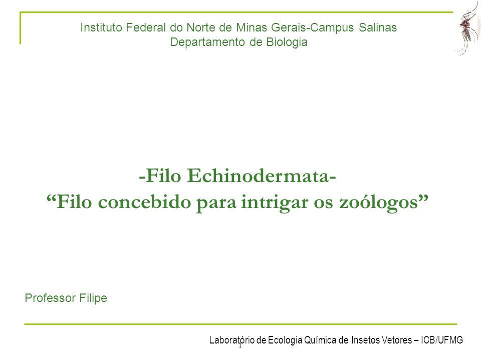 -Filo Echinodermata- Filo concebido para intrigar os zoólogos