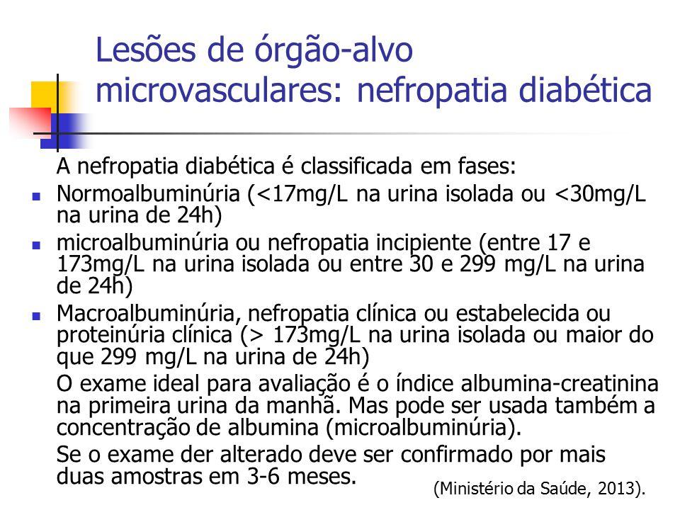 Lesões de órgão-alvo microvasculares: nefropatia diabética