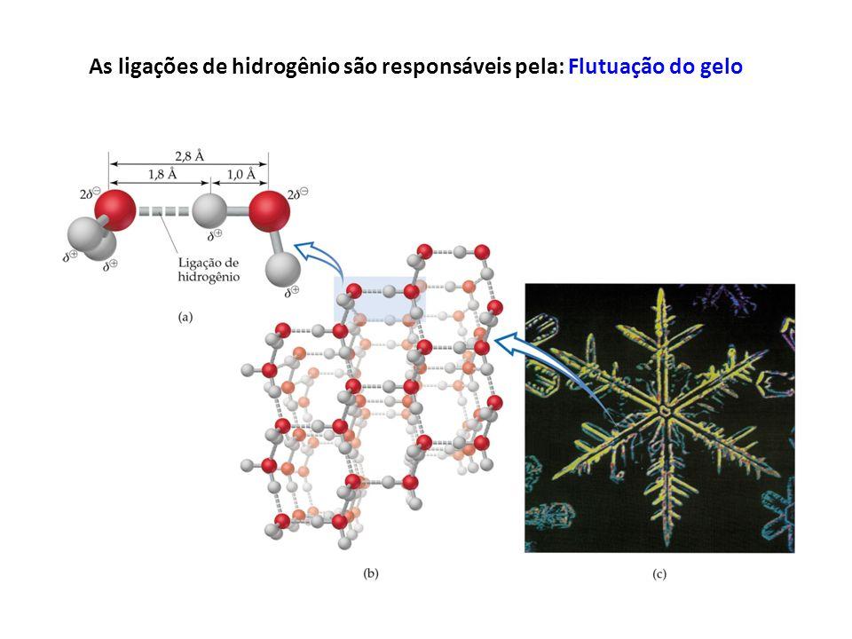 As ligações de hidrogênio são responsáveis pela: Flutuação do gelo