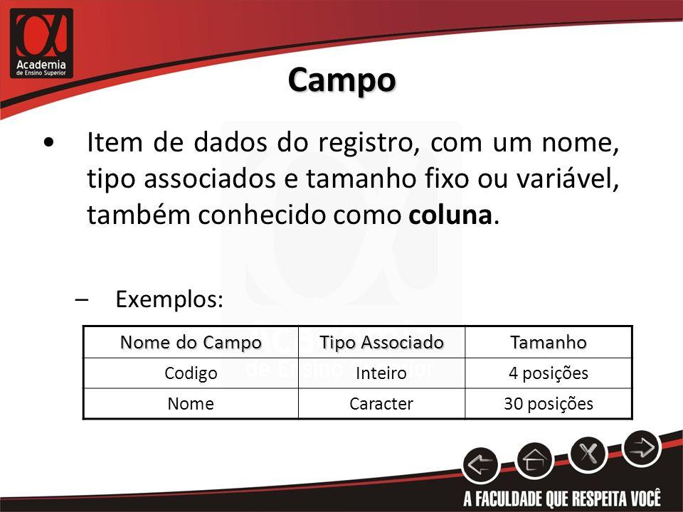 Campo Item de dados do registro, com um nome, tipo associados e tamanho fixo ou variável, também conhecido como coluna.