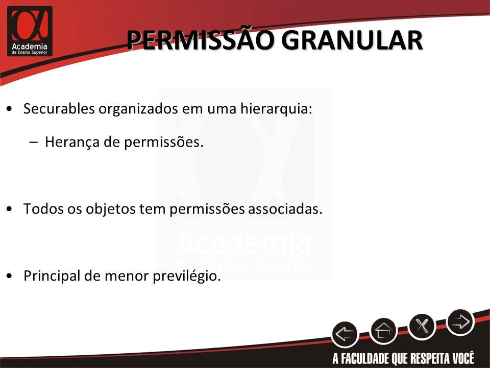PERMISSÃO GRANULAR Securables organizados em uma hierarquia: