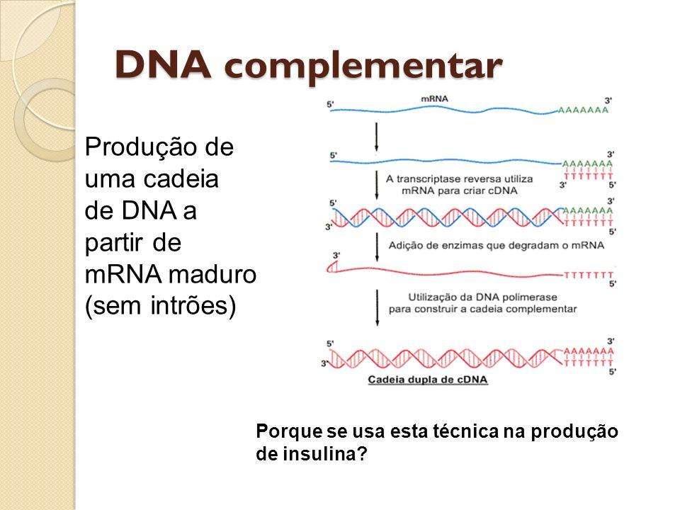 DNA complementar Produção de uma cadeia de DNA a partir de mRNA maduro (sem intrões) Porque se usa esta técnica na produção de insulina