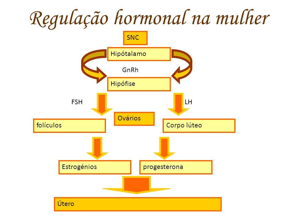 Regulação hormonal na mulher