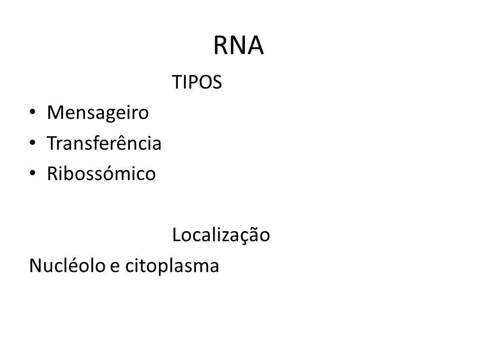 RNA TIPOS Mensageiro Transferência Ribossómico Localização