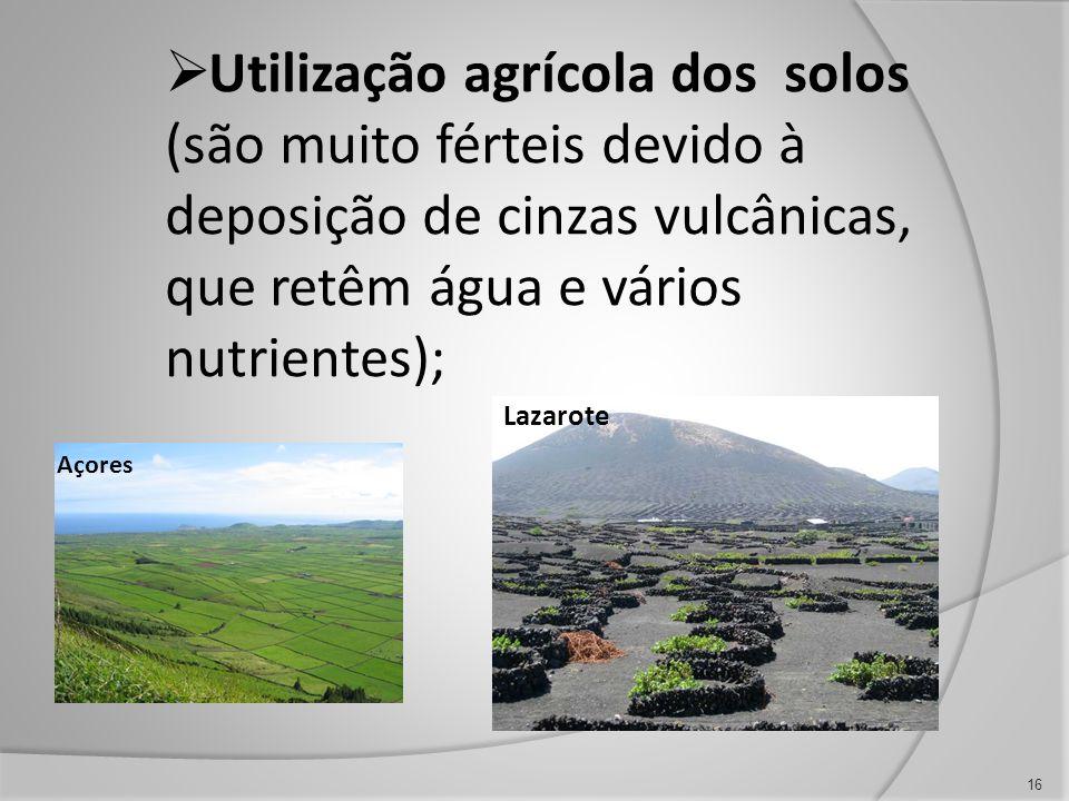 Utilização agrícola dos solos (são muito férteis devido à deposição de cinzas vulcânicas, que retêm água e vários nutrientes);