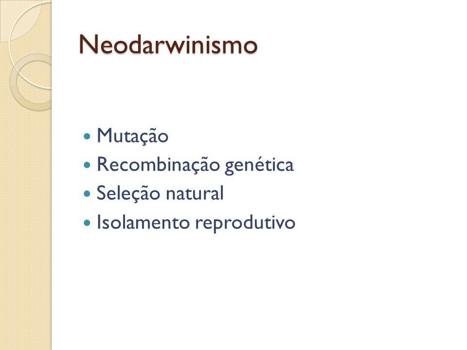 Neodarwinismo Mutação Recombinação genética Seleção natural