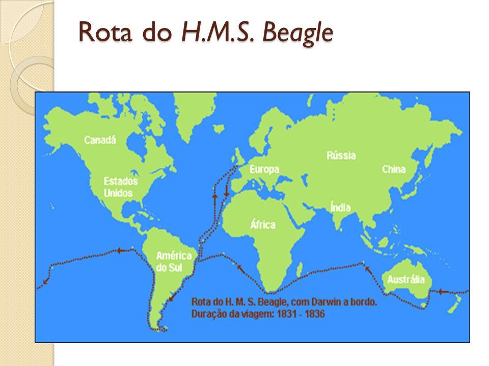 Rota do H.M.S. Beagle