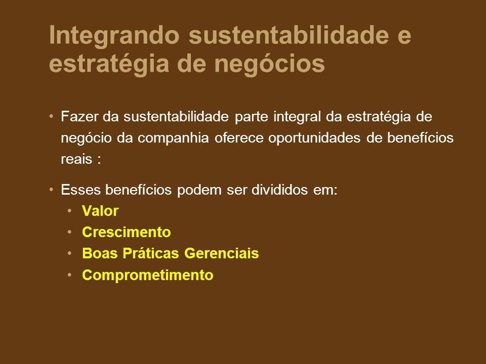 Integrando sustentabilidade e estratégia de negócios