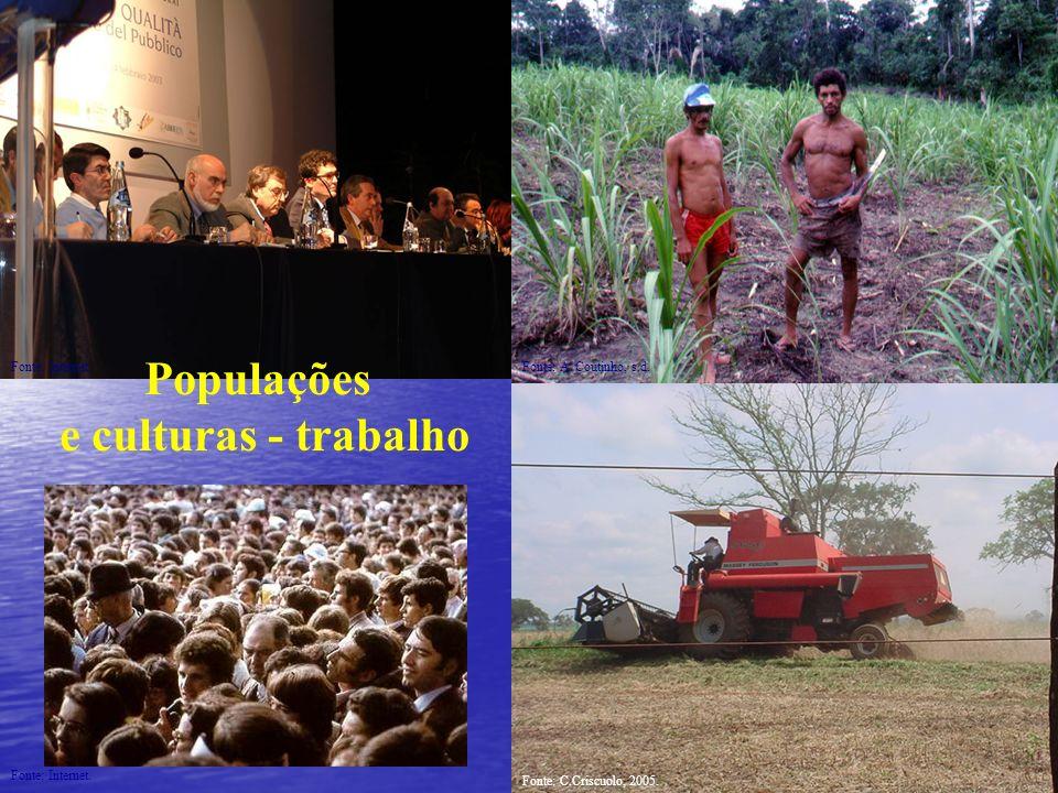 Populações e culturas - trabalho