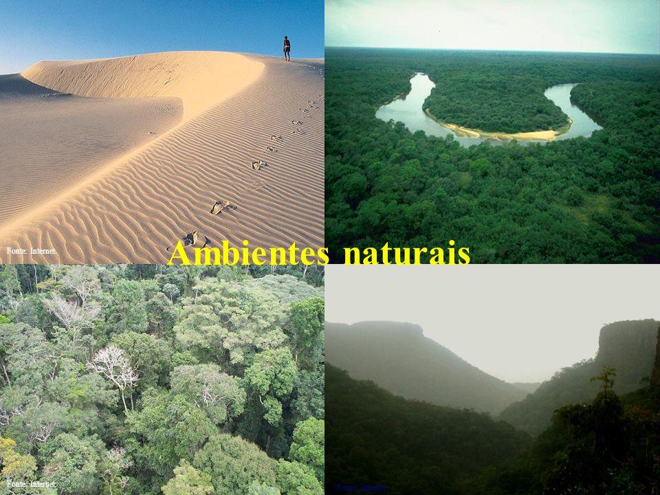 Ambientes naturais Fonte: Internet. Fonte: Internet. Fonte: Internet.