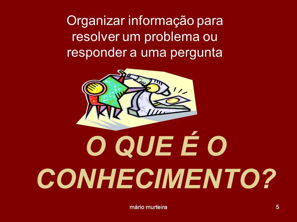 Organizar informação para resolver um problema ou responder a uma pergunta