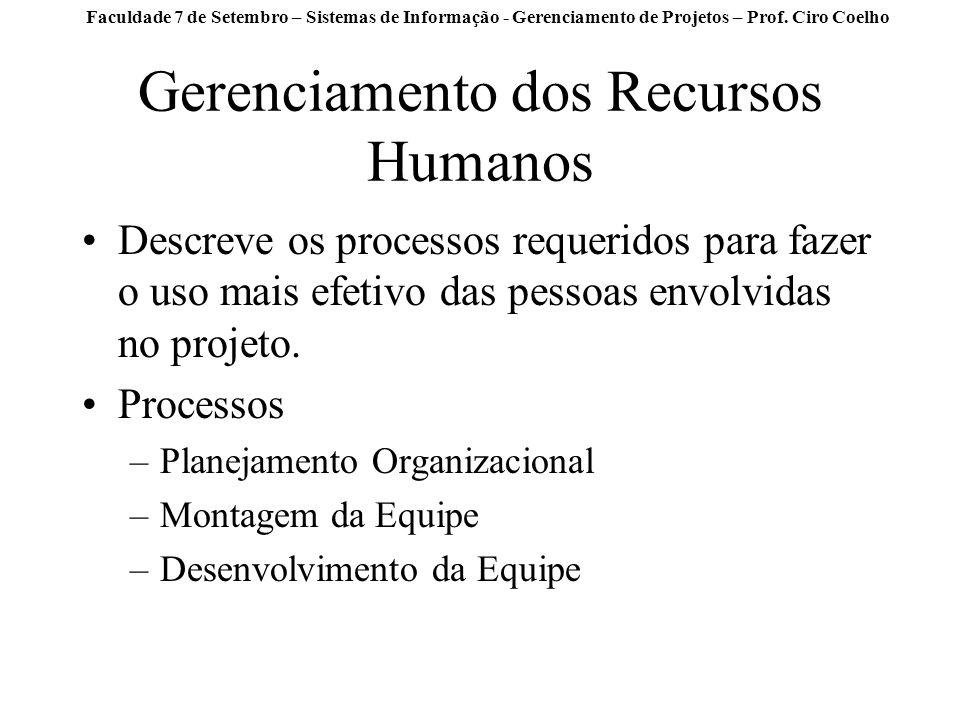 Gerenciamento dos Recursos Humanos