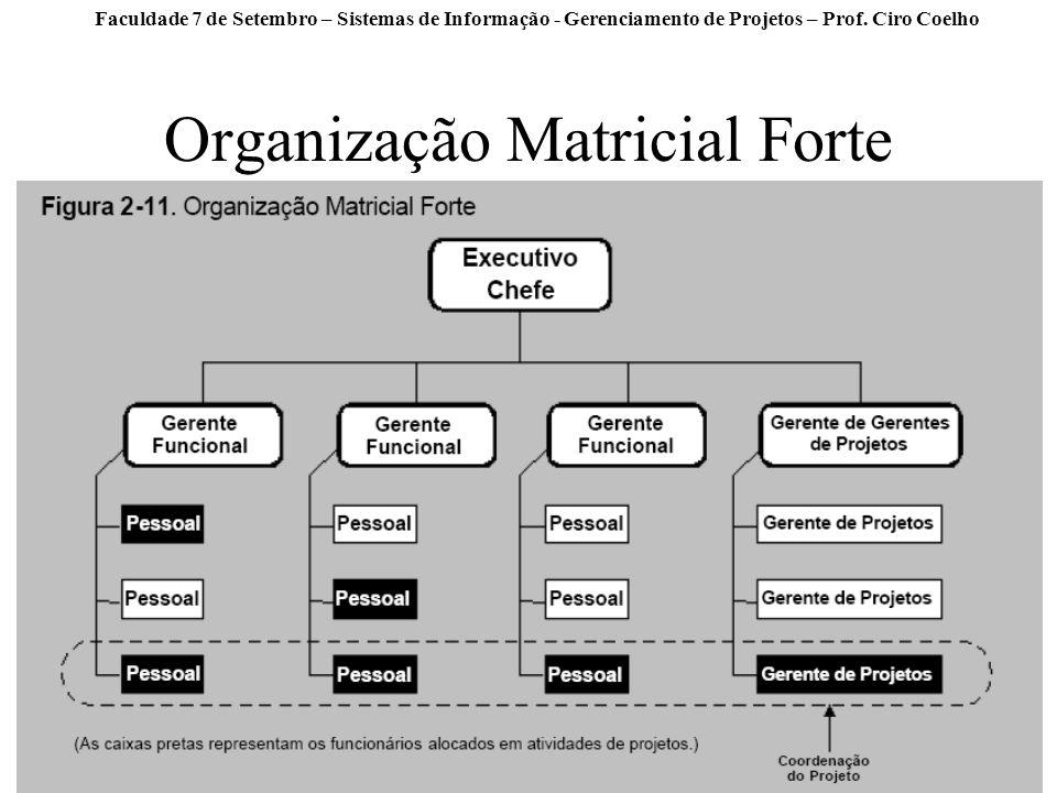 Organização Matricial Forte