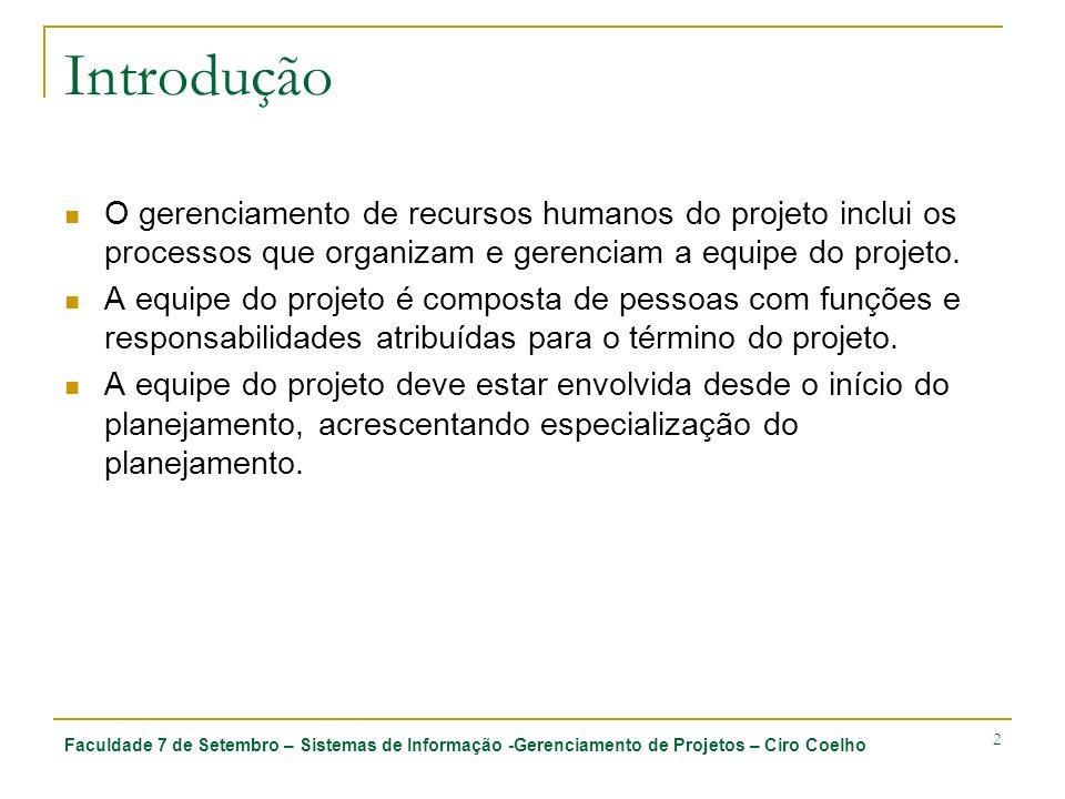 Introdução O gerenciamento de recursos humanos do projeto inclui os processos que organizam e gerenciam a equipe do projeto.
