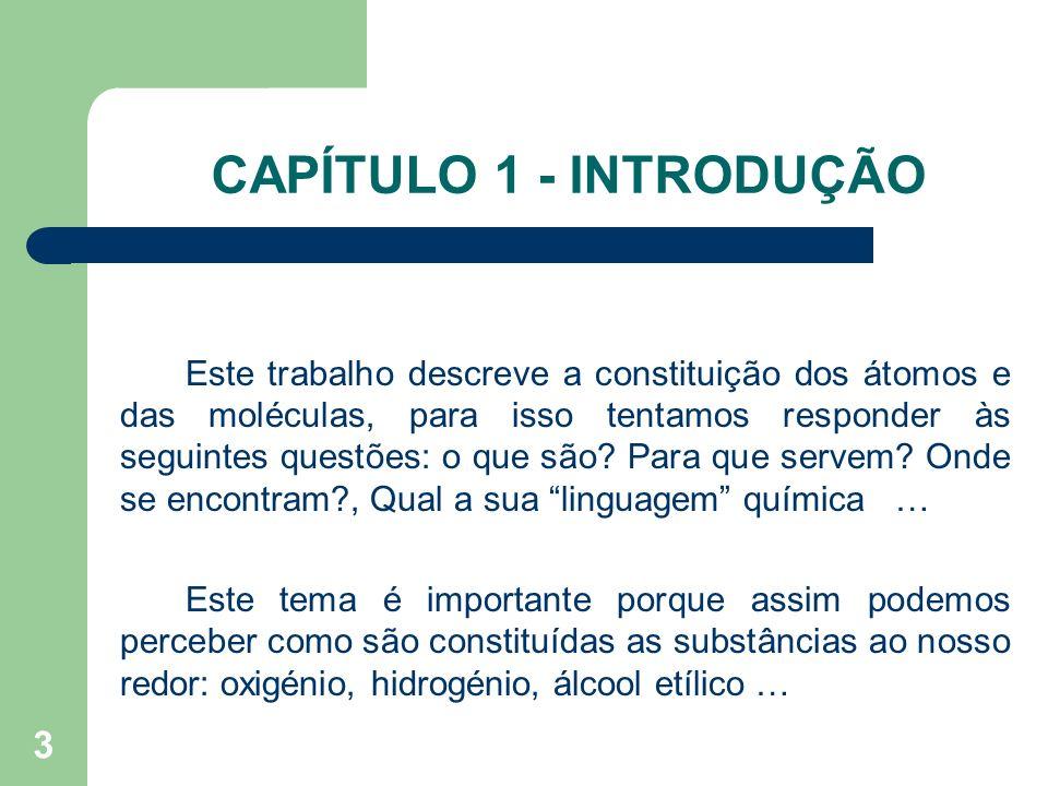 CAPÍTULO 1 - INTRODUÇÃO