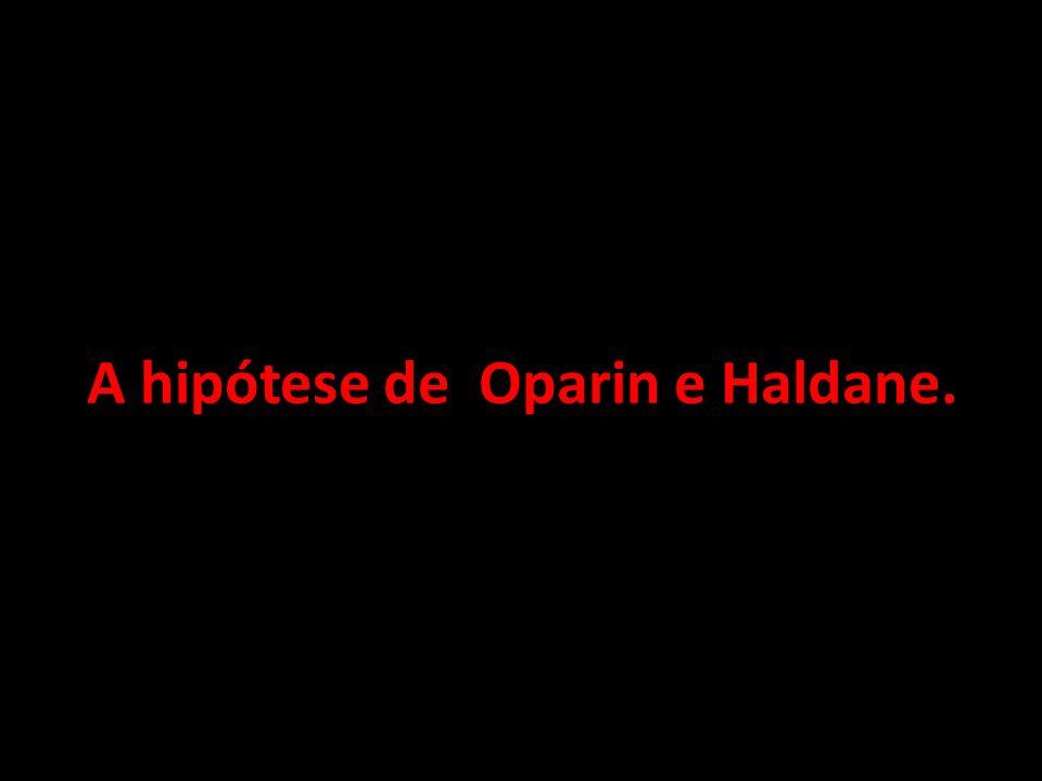 A hipótese de Oparin e Haldane.