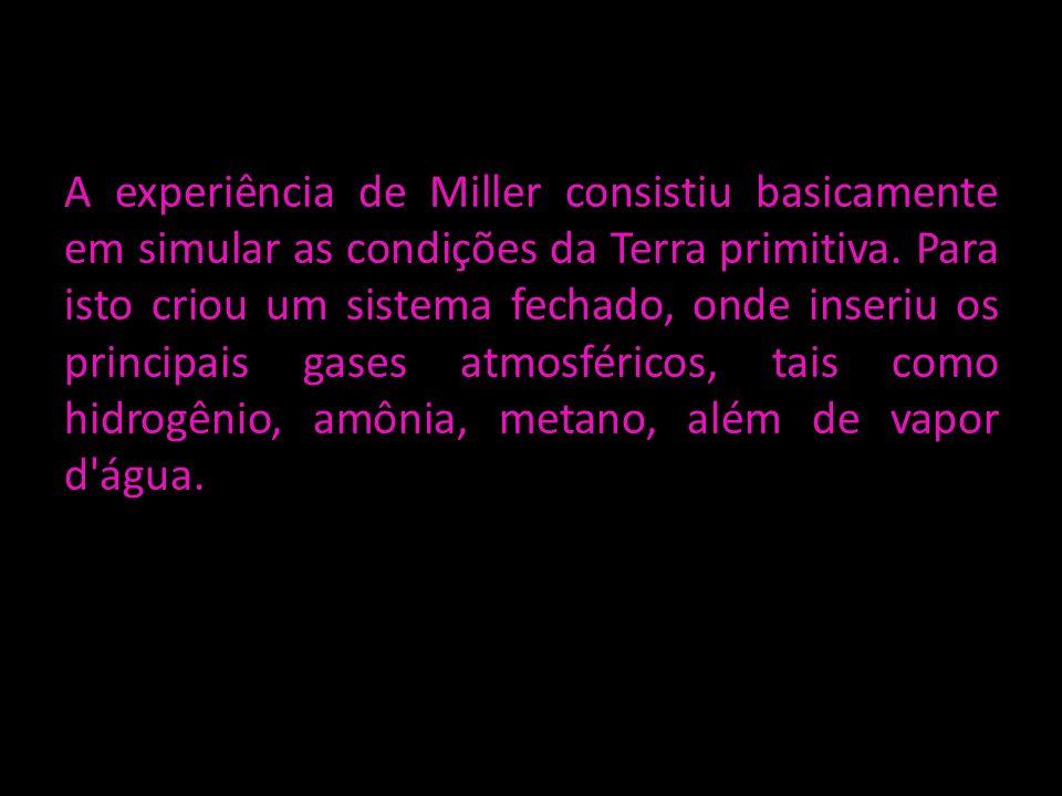 A experiência de Miller consistiu basicamente em simular as condições da Terra primitiva.