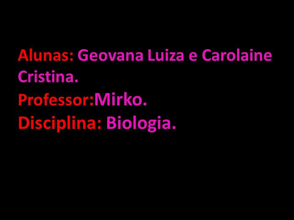 Alunas: Geovana Luiza e Carolaine Cristina. Professor:Mirko