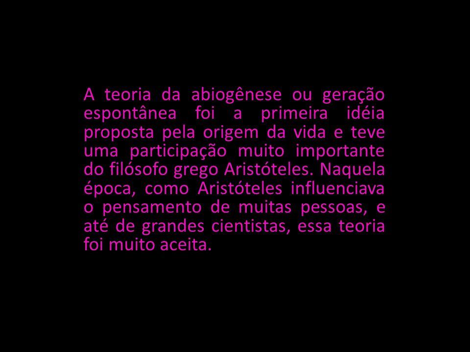 A teoria da abiogênese ou geração espontânea foi a primeira idéia proposta pela origem da vida e teve uma participação muito importante do filósofo grego Aristóteles.