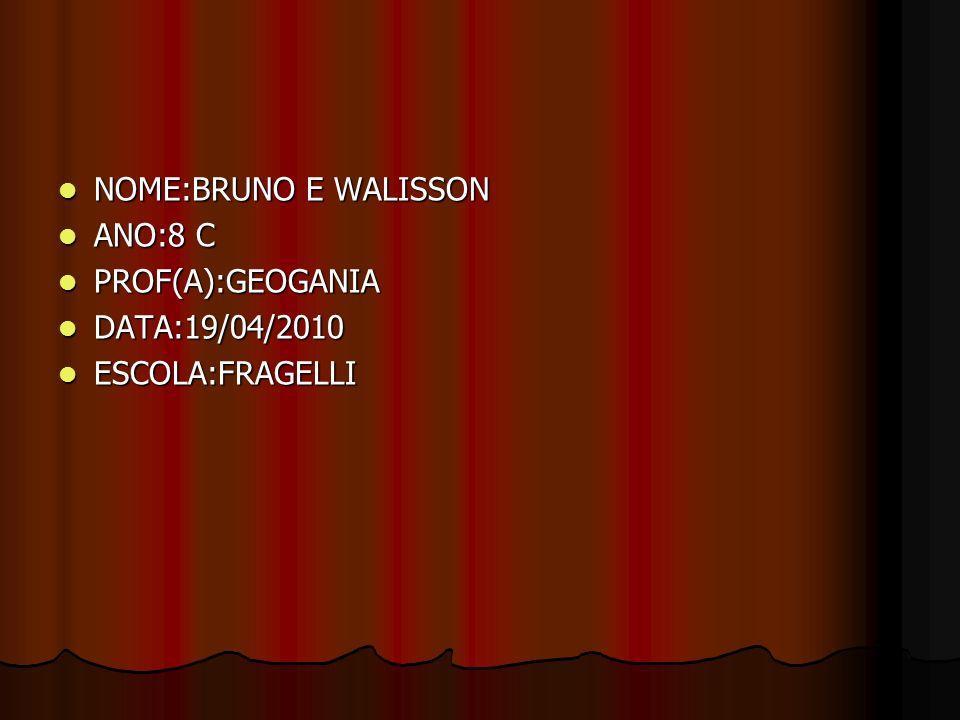 NOME:BRUNO E WALISSON ANO:8 C PROF(A):GEOGANIA DATA:19/04/2010 ESCOLA:FRAGELLI