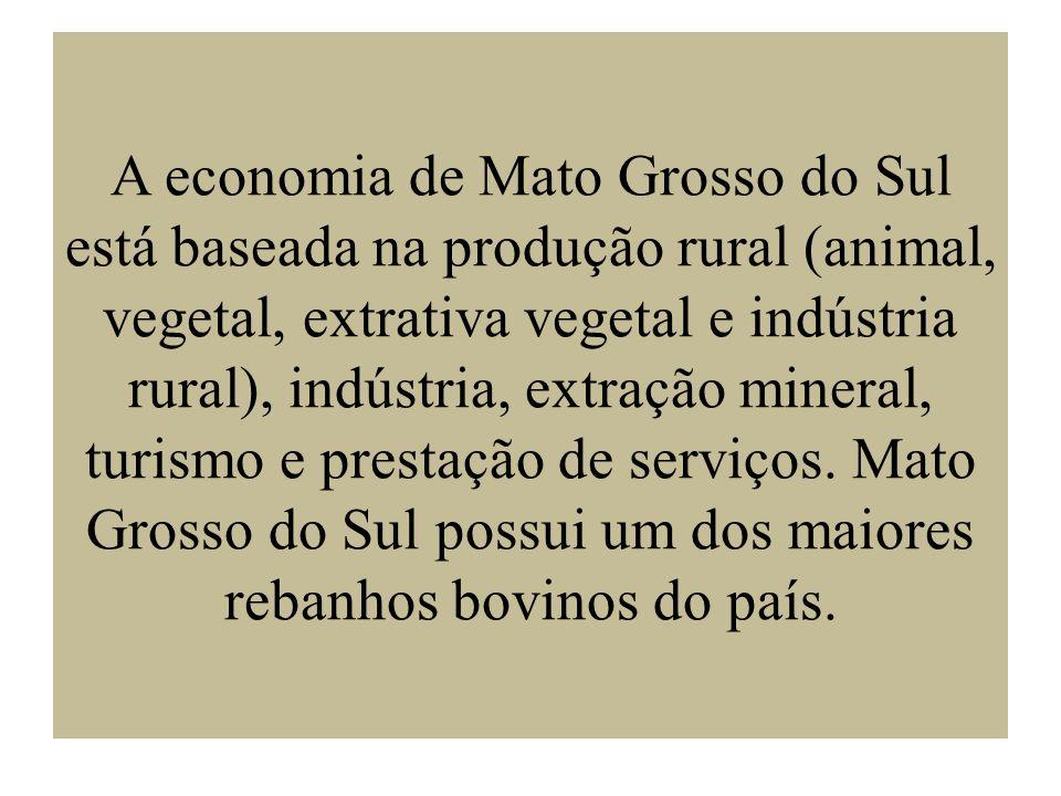 A economia de Mato Grosso do Sul está baseada na produção rural (animal, vegetal, extrativa vegetal e indústria rural), indústria, extração mineral, turismo e prestação de serviços.