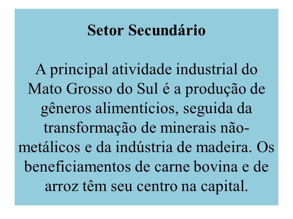 Setor Secundário A principal atividade industrial do Mato Grosso do Sul é a produção de gêneros alimentícios, seguida da transformação de minerais não-metálicos e da indústria de madeira.