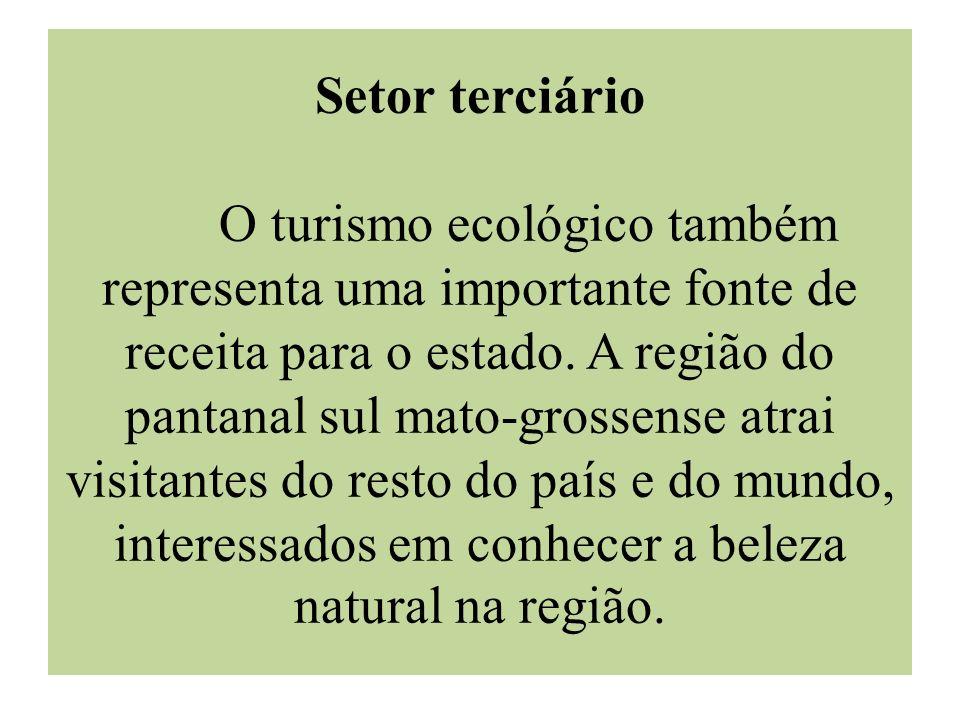 Setor terciário O turismo ecológico também representa uma importante fonte de receita para o estado.